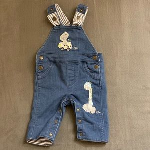 Baby blue denim overall.